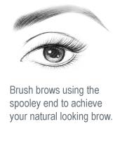 brow-02.png